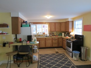Existing Kitchen - view of work area