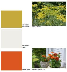 Accent color palette